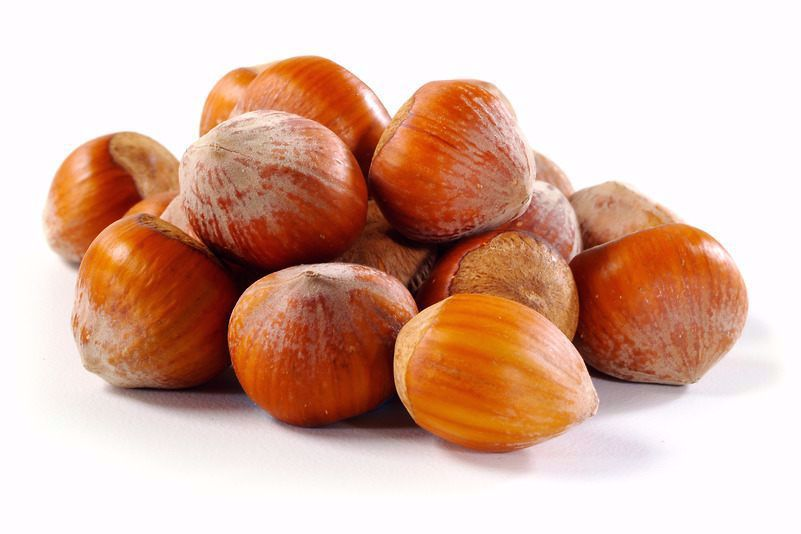 ( Hazelnuts / Filberts (In Shell - فندق با پوست